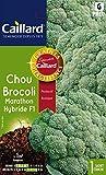 Caillard PFCC11866 Graines de Chou Brocoli Marathon Hybride F1