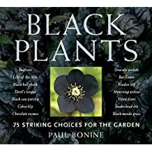 Black Plants: 75 Striking Choices for the Garden