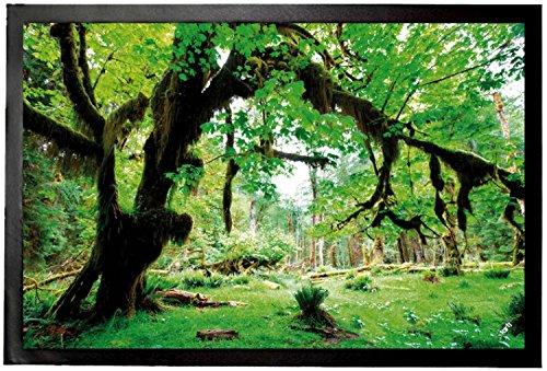 boschi-deep-green-forest-back-to-nature-zerbino-60-x-40cm