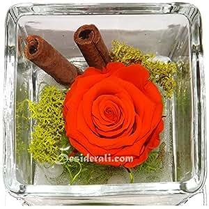 Composizione rosa stabilizzata profumata arancio 8x8