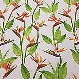 Stoff Meterware Baumwolle Natur Strelitzie Blume Madeira