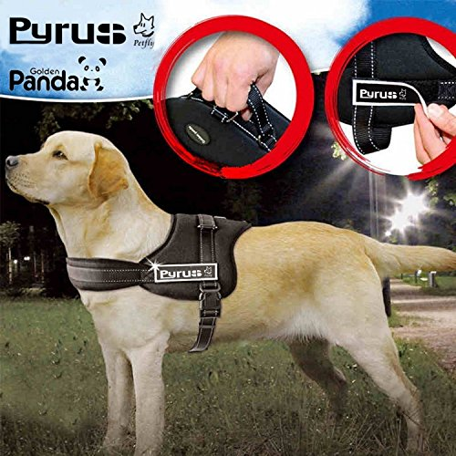 Dog-Harness-PYRUS-K8-No-Pull-Harness-Dog-Leash-Padded-Pet-Walking-Harness-Heavy-Duty-for-Dogs