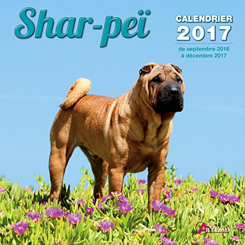 Calendrier shar-pei