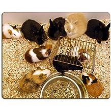 MSD Caucho Natural Gaming Mousepad imagen ID: 806940 cobayas y conejos