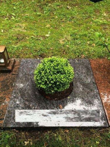 Grabplatte inklusive Gravur Abdeckplatte 100cm x 100cm Granit Orion Grabstein Urnenstein