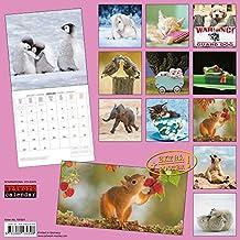 Voll süß 2018: Kalender 2018 (Artwork Edition)