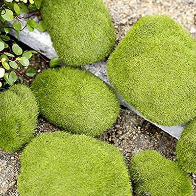 1Stück Miniatur Fairy Garden Mini Simulation Moos Stein Ornament Puppenhaus Blumentopf Figur DIY Decor Home Dekoration von Greenlans - Du und dein Garten