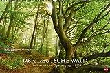 Der deutsche Wald - Ein literarischer Spaziergang - Kalender 2019