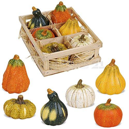 matches21 Tolle Herbstdeko Deko Kürbis Set 6 Stück sortiert aus Ton Erntedank Dekoration Halloween je ca. 5x5 cm