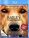 Bailey Ein Freund fürs kostenlos online stream