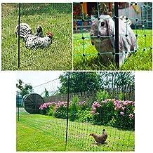grüner Garten-Elektrozaun bis 50m ausrollbar / 112cm hoch mobil und flexibel inkl. 14 Pfähle + Heringe (nur 5,9cm Maschenweite) Hundezaun Katzenzaun Hühnerzaun Geflügelzaun Geflügelnetz Schafzaun Zaun grün Weidezaun Hunde Katzen Kaninchen Gartenzaun