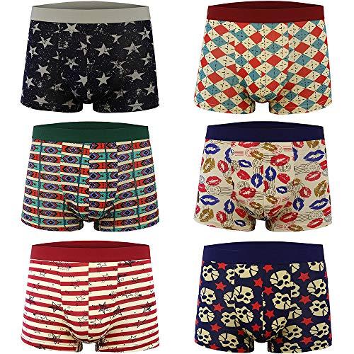 FZmix Herren Boxershorts - Unterwäsche Retroshorts - Trunks Boxer Short Unterhose(6er Pack) (Bikini Herren-unterwäsche Pack)