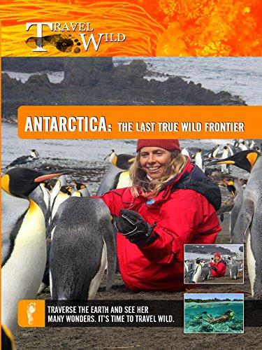 travel-wild-antarctica-the-last-true-wild-frontier-ov