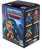 The Loyal Subjects Boys Loyal Subjects Masters of the Universe Blindbox Standard