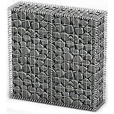 vidaXL Gabion Base pour mur 100 x 100 x 30 cm Clôtures Gabions Base pour mur gabion