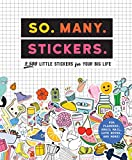 So. Many. Stickers.: 2,500 Little Stickers for Your Big Life (Pipsticks+workman)