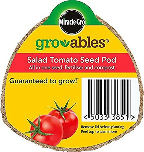 miracle-gro-gro-ables-salad-tomato-seed-pod