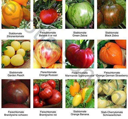 samen-saatgutsortiment-2-set-mix-mischung-historische-samenechte-tomatensorten-12-sorten-a-10-samen
