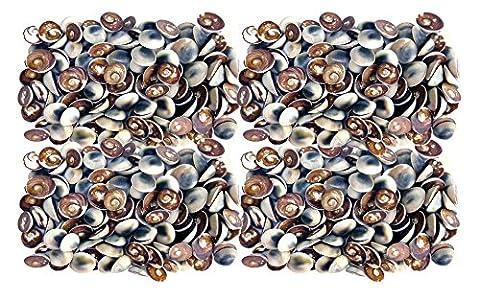 Seemuschel Bastel Zubehör - ca. 100 - 130 St. Muscheln - Katzen Eye/Operculum (schwarz) für Seemuschel Schmuckherstellung