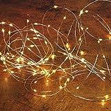 AM-Design Kölle LED Silberdraht mit Batterie, 100 Lichter, mit Zeitschaltuhr, warmweiß