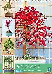 Bonsai: Gartenkunst im Kleinen (Wandkalender 2019 DIN A3 hoch): Japanische Gartenkunst Bonsai (Monatskalender, 14 Seiten ) (CALVENDO Orte)