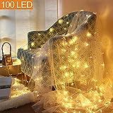MOVEONSTEP LED Guirlandes Lumineuses basse tension FR plug fées étoilées Lumières DC 31V avec 8 modes d'éclairage pour l'arbre de Noël, Fête, Jardin, mariage des événements-Blanc chaud (100 LEDs)