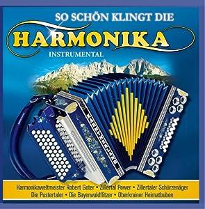 So Schön Klingt die Harmonika - Instrumental (Steirische Harmonika)
