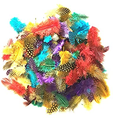 100 Spotted Feathers spotted Craft Collage Feathers Millinery Pack FLY FISHING COLOURs from Bee Different Ltd