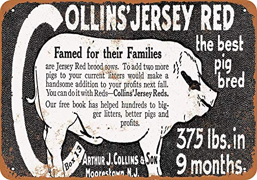 Wise Degree 1920 Collins' Jersey Red Pigs Metallblechschild Poster Wand K¨¹Che Kunst Cafe Garage Shop Bar Dekoration - Jersey-stil Pin