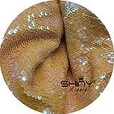 ShinyBeauty Pailletten-Stoff Pfirsich 4 Meters für