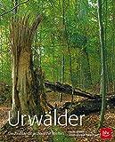 Urwälder: Deutschlands archaische Welten - Georg Sperber