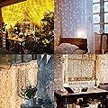Greatever Lichtervorhang, 300 LEDs Lichterkette, 3M x 3M, IP65 Wasserfest, 8 Leuchtmodi LED Lichterketten mit Fernbedienung für Weihnachten Party Hochzeit Garten Schlafzimmer Innen und außen Deko (Warmweiß)