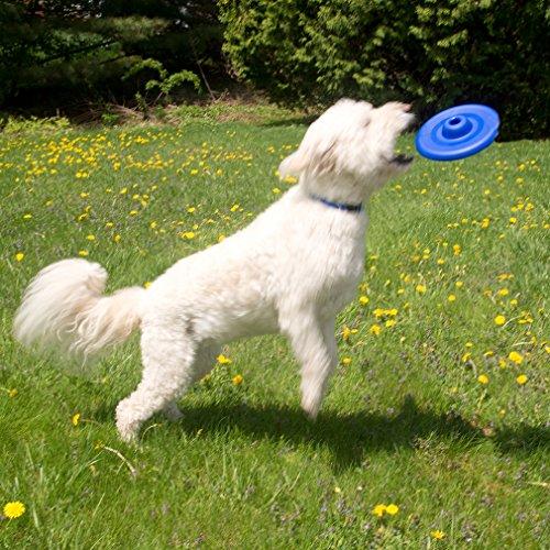 evelots-en-plastique-pet-frisbee-jouets-pour-chien-disque-volant-durable-de-voyage-taille-m