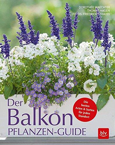 Der Balkonpflanzen-Guide: Die besten Arten & Sorten für jeden Standort