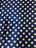Faschingsstoff Sterne glänzend blau/weiß 0,50 m x 1,50 m