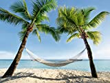 Artland Qualitätsbilder | Glasbilder Deko Glas Bilder 80 x 60 cm Karibik Palmen Strand Hängematte Landschaft B6VD
