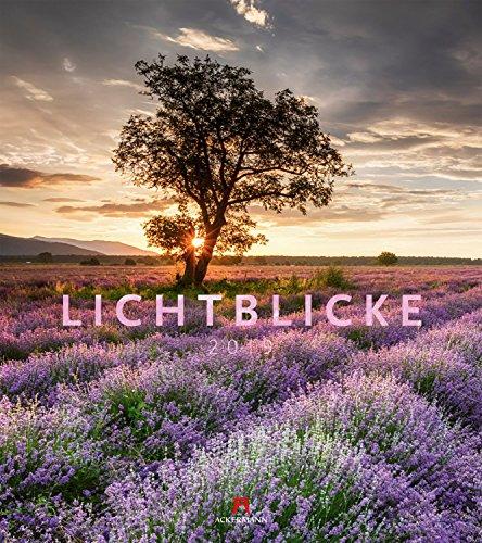 Lichtblicke 2019, Wandkalender im Hochformat (48x54 cm) - Inspirationskalender / Landschaftskalender mit Monatskalendarium