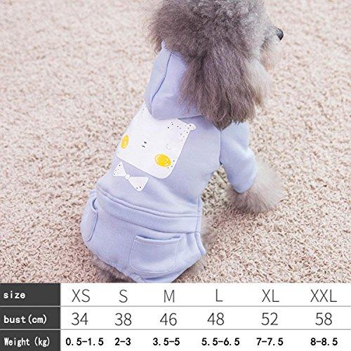 Teddy Hundebekleidung Herbst- und Winterwelpen Haustierbekleidung , 013 , XXL