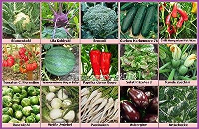 Gemüse Set 2: Broccoli Pastinaken Rosenkohl Blumenkohl Gurken Wassermelone Zucchini Artischocke Samen Saatgut