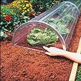 Longrow superbe Cloche pour le jardin