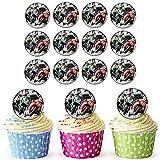 Moto GP 24personnalisé comestible pour cupcakes/décorations de gâteau d'anniversaire–Facile prédécoupée + Cercles