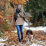 Hundeleine – Premium Multifunktionsleine – 4-fach längenverstellbar – 2m lang - 6