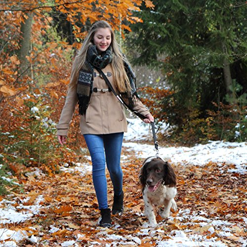 Hundeleine PetElements   inklusive Gratis Leckerlibeutel   Profi Doppelleine & Umhängeleine (2,5 cm breit)   längenverstellbare Hundeführleine & Übungsleine (1m – 2m)   Perfekt für Hundetraining   beißfestes Nylon - 6