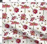 Marienkäfer, Gänseblümchen, Blumen, Bienen, Pinke