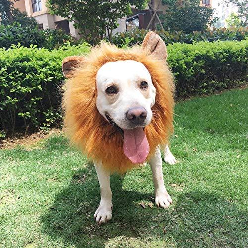 (PBPBOX Hundekostüm Löwenmähne mit Offenen Ohren für Halloween, Weihnachten Oder Kleidung Festival)