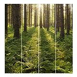 Bilderwelten Schiebegardinen Set - Sonnenstrahlen in grünem Wald - 4 Flächenvorhänge, Aufhängungssystem: Ohne Aufhängung, Größe HxB: 250 x 240cm (4 Flächenvorhänge á 250 x 60cm)
