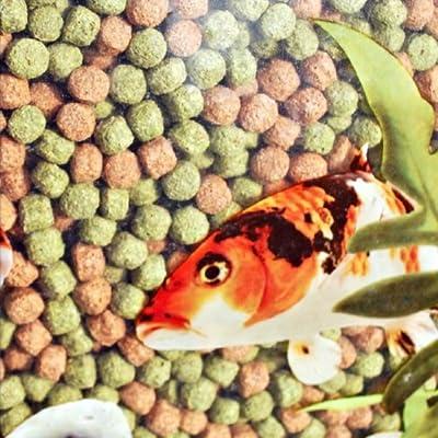 20kg Webbox Rainbow Pellets Floating KOI CARP & All Pond Fish Food by Pets Choice