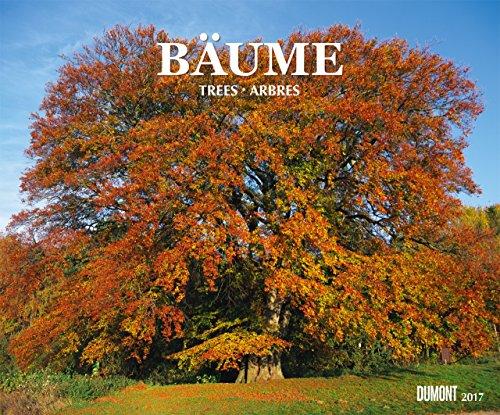 baume-kalender-2017-dumont-verlag-wandkalender-584-cm-x-485-cm