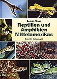 Reptilien und Amphibien Mittelamerikas. Band2: Schlangen