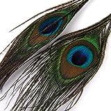 1 Paar Peacock Multicolor Feder Fashion Ohrhänger -